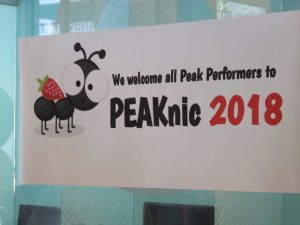 Banner from PEAKnic 2018, our employee appreciation event